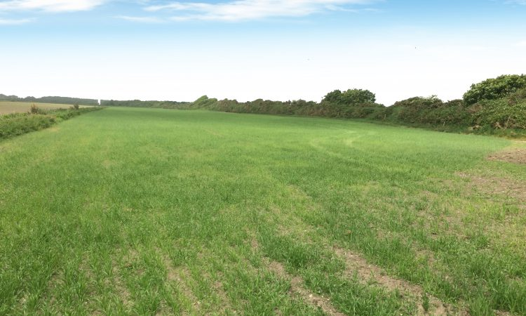 Farmers will vie with 'good lifers' for this well-located land