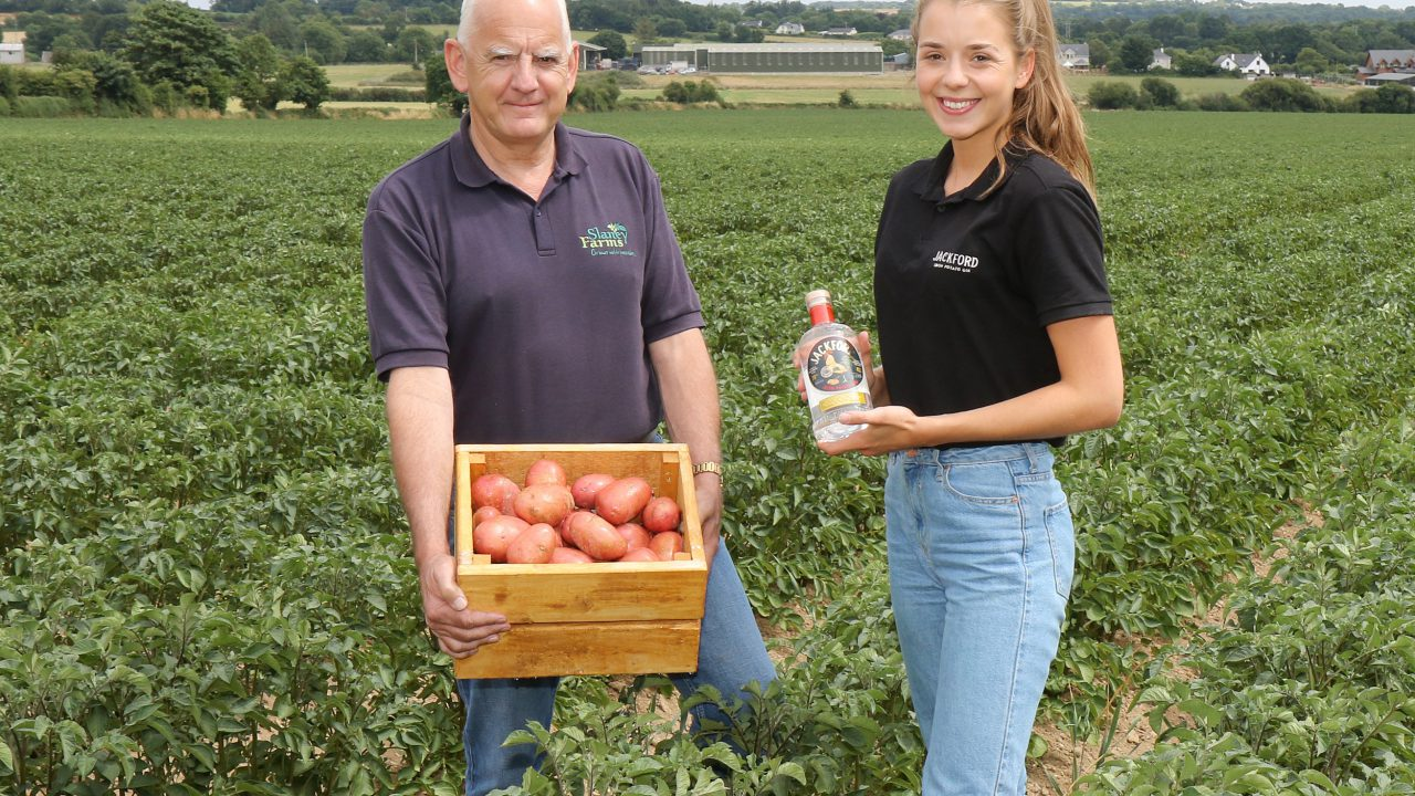 Potato grower diversifies into prize-winning Jackford gin