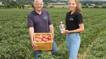 Potato grower diversifies into prize-winning Jackford gin