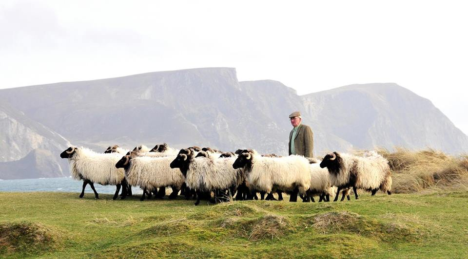 Achill farmer shortlisted for national farming award