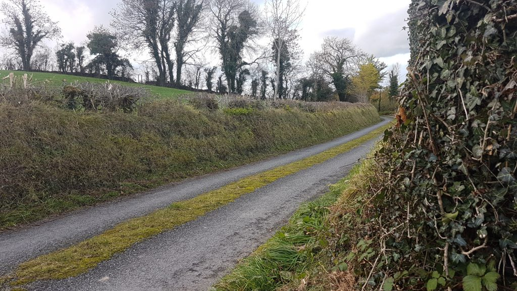 Irish Rural Link seeks directive for groups on Covid-19