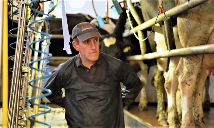 Using technology to tackle herd cell count on a Co. Longford farm