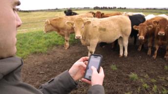 FARM SMART: How farmers can make their lives easier through technology