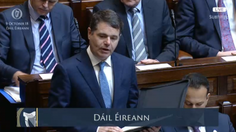 Agri-food to be most adversely effected by Brexit – Donohoe