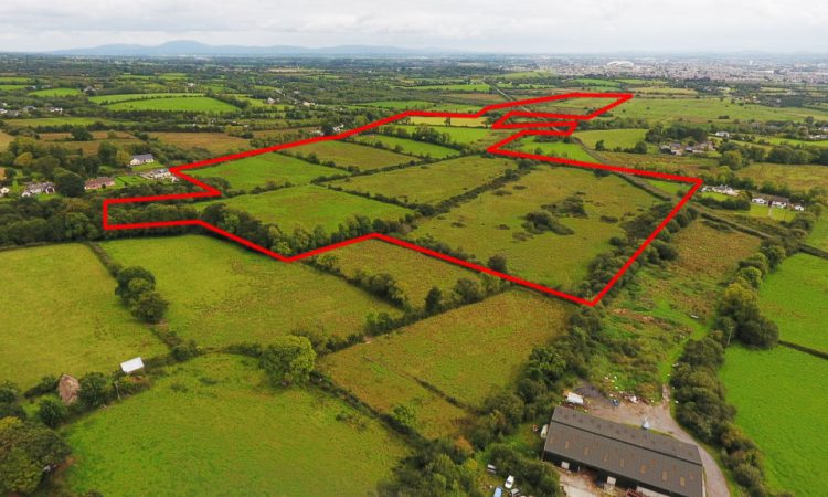 Residential farm and house with 'enormous potential' for sale in 4 lots