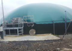 天然气的成本是否推迟了爱尔兰沼气工业的发展?