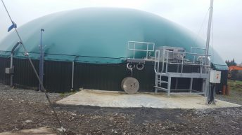 Slurry and silage in Cork could supply biogas to 56,000 homes