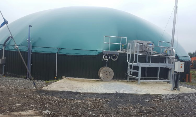 Is the cost of natural gas delaying the development of an Irish biogas industry?