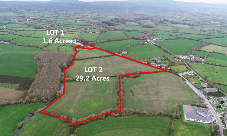 'Prime agricultural land' for sale in 2 lots in Co. Wexford