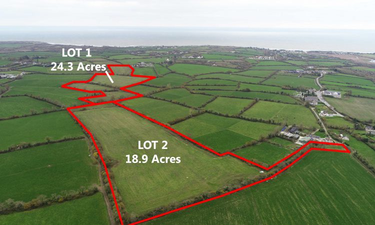 Non-residential land for sale in 2 lots in Co. Wexford