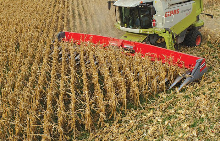 Grain price: Planting up in Ukraine as late grain harvest draws to a close