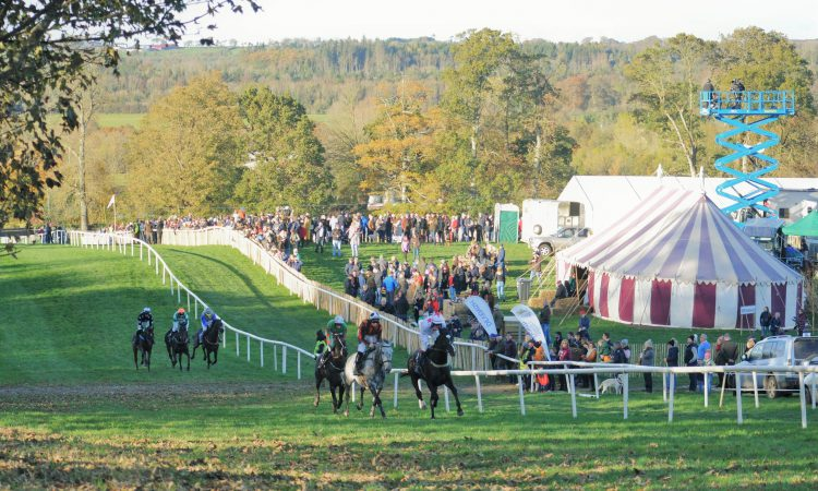 Record turnout for Dowth Point to Point and Country Fair