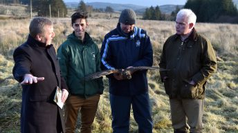 Hen Harrier Programme payments begin issuing to farmers