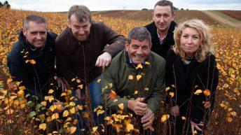 5 million broadleaf trees to be planted in Ireland this year