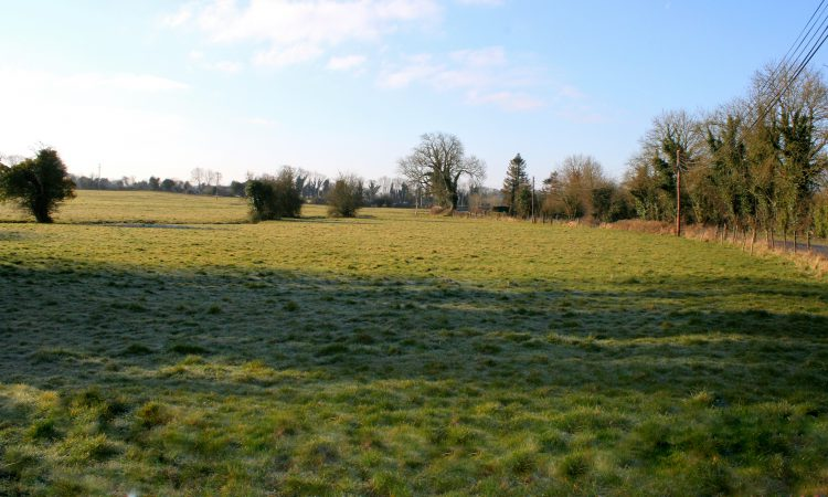 'Superb farm and lands' for sale in 3 lots in Co. Meath