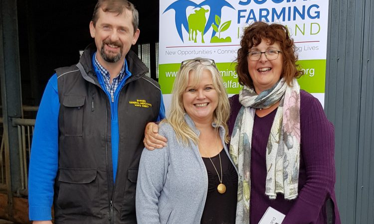 Mayo family host Syrian farmers on social farming placement