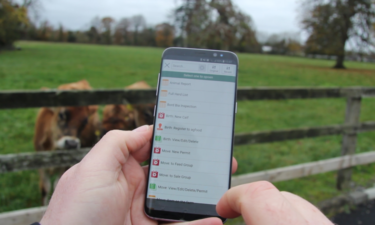 HerdApp: Instant access to information and making inspections easy