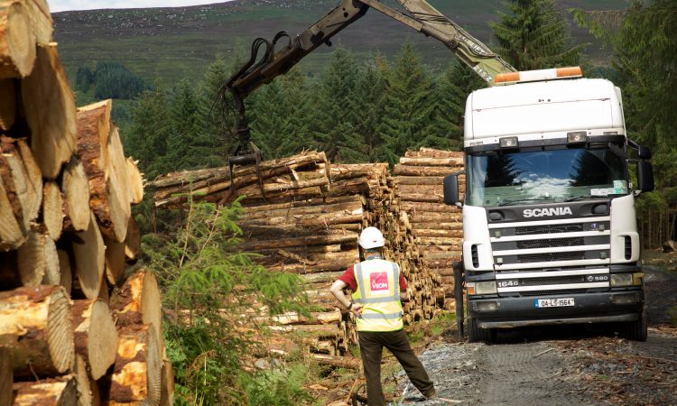 What exactly do forest owners want to see done to ease the licences gridlock?