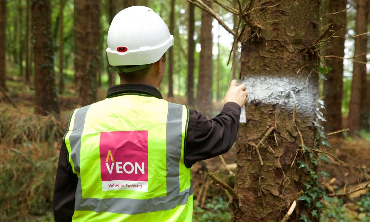 Veon is empowering farmers with forestry knowledge