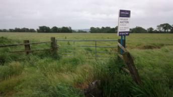 Auction firm ceases farmland sale ahead of farmer protest