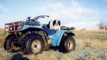 Parents urged not to buy quad bikes for kids this Christmas