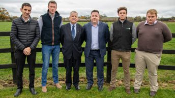 AgriLand partners with Teagasc Green Acres Calf to Beef Programme
