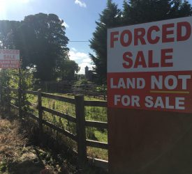Protest to take place on farm subject to 'forced sale' today