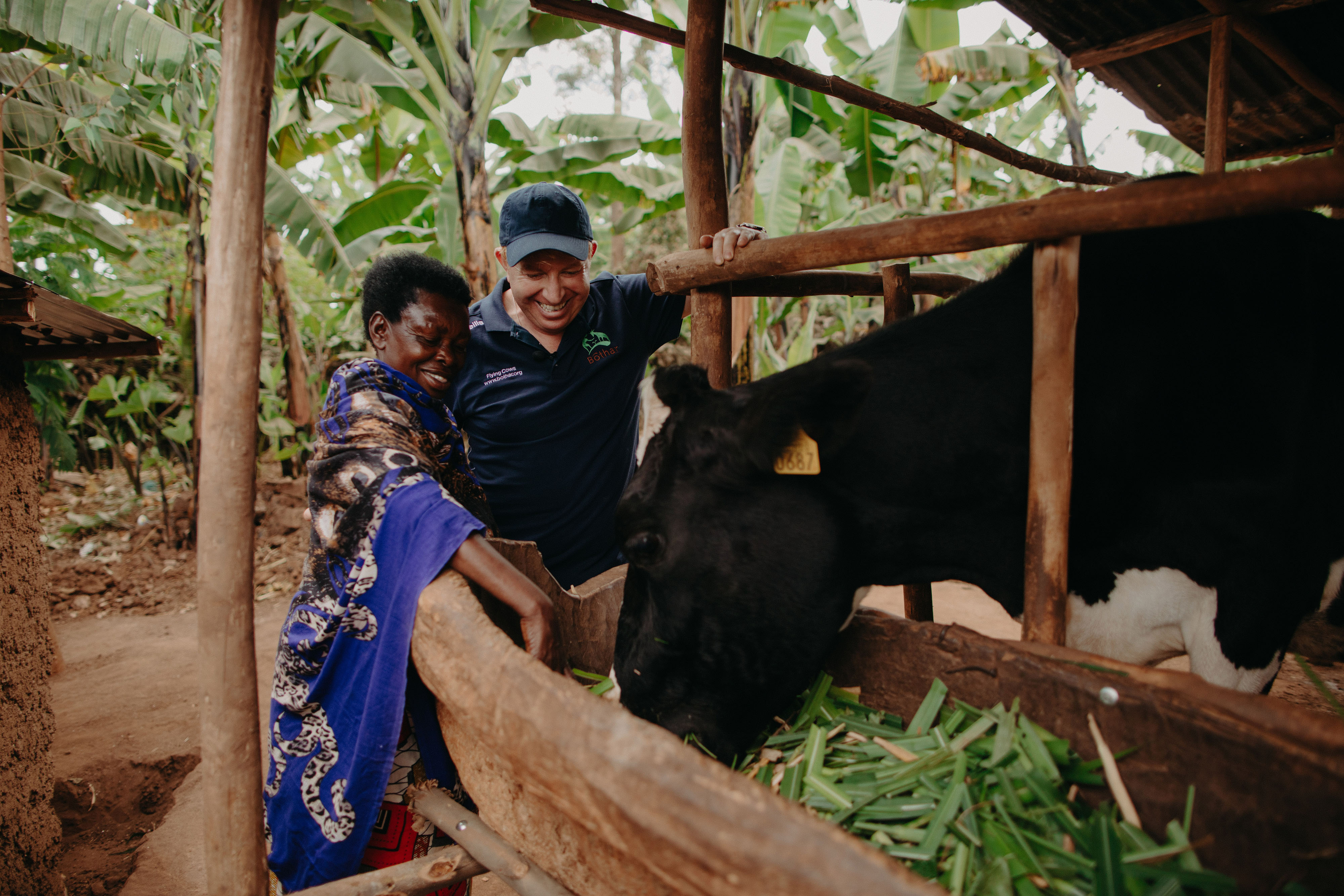 'The Bothar cow gave hope, income and security'