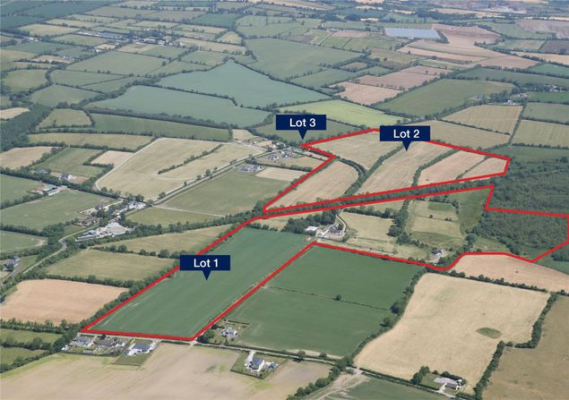 Lots for sale with outbuildings, land and forestry in Co. Meath