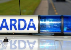 2 arrested as Gardai recover trailer stolen from farmyard