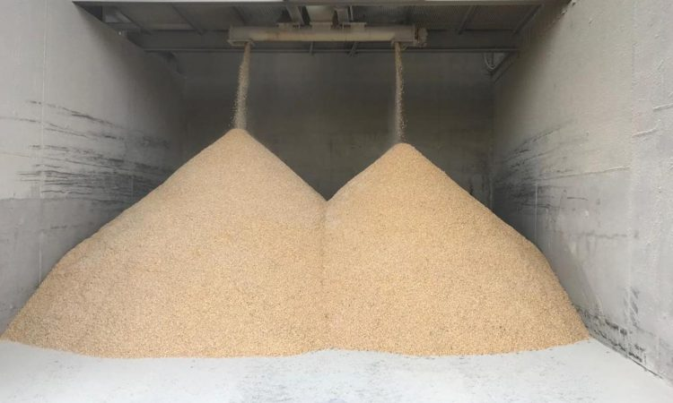 Irish Grain Assurance Scheme recognised for lining up with world standards