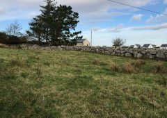 Mixed farm gives opportunity for local Galway landowners to extend existing holding