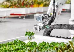 看看美国第一个机器人农场