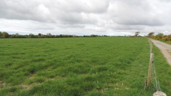 Multi-purpose farm on the market for €10,000/ac in Co. Wexford