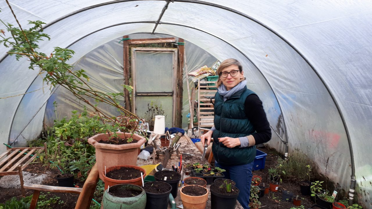 Mayo smallholder hosts female social farmer placement