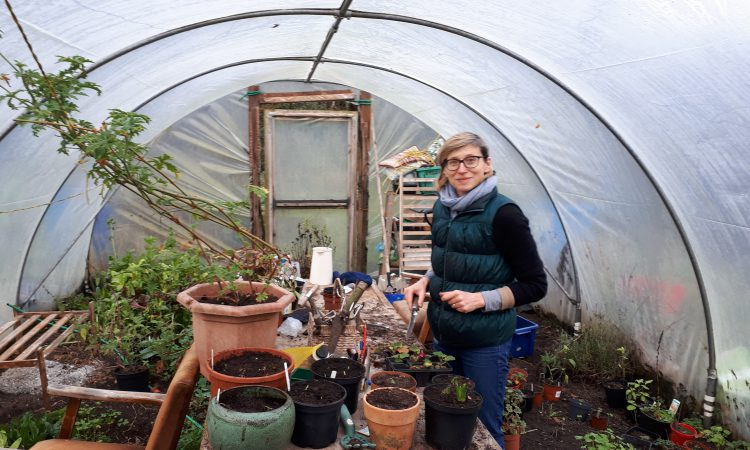 Mayo smallholder hosts female social farmer placement