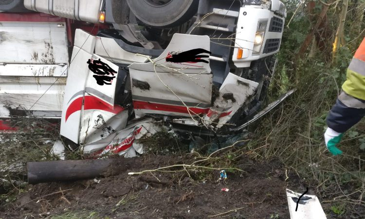 40 cattle freed from overturned lorry in Northern Ireland