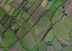 Co. Wexford land for sale 'suitable for all types of agriculture'