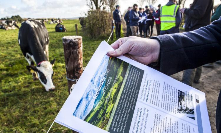 Johnstown Castle farm walk highlights dairy sustainability
