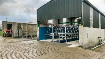 Milk price difference of 'over €8,000 this year' – ICMSA
