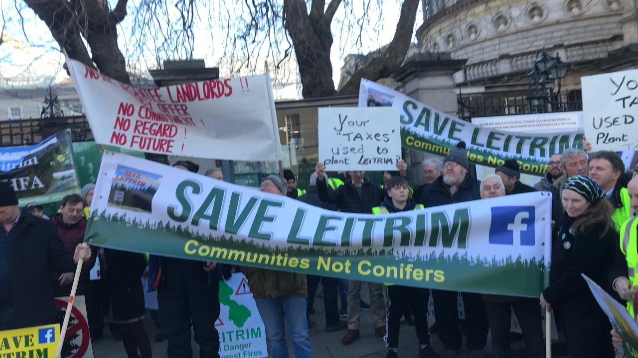 Save Leitrim weighs in on forestry licensing