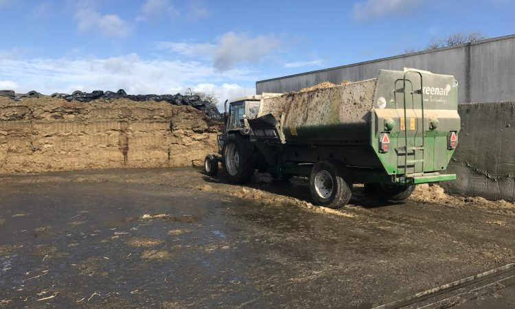 Beef farmers: Have you tested your silage?
