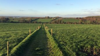 47ac residential farm offers commercial and agricultural potential