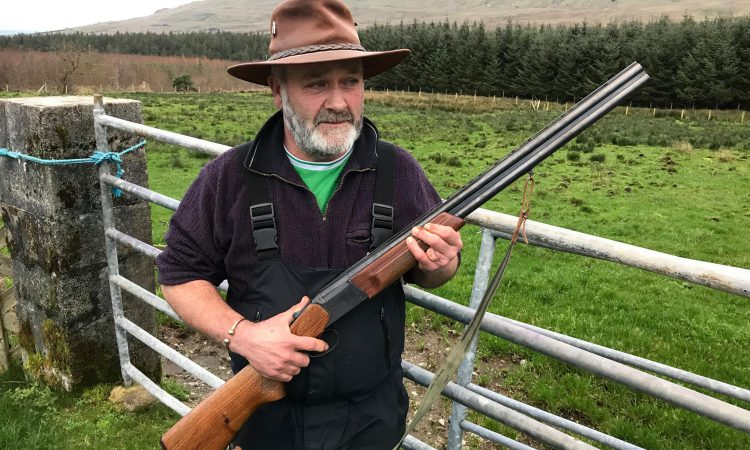 Fed-up farmer: If the dog on my land is on a lead it'll still be shot