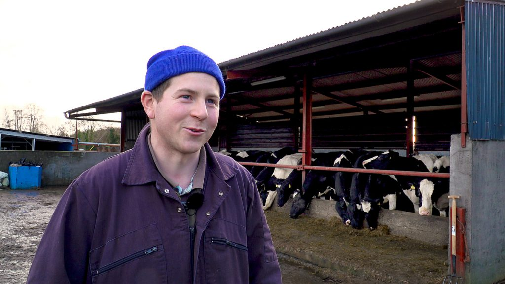 how did this dairy farmer lower his scc by 300 000 cells ml in just