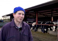 How did this dairy farmer lower his SCC by 300,000 cells/ml in just 3 weeks?