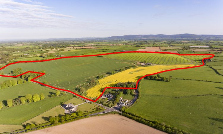 200ac Cork roadside holding 'finest to come on market'
