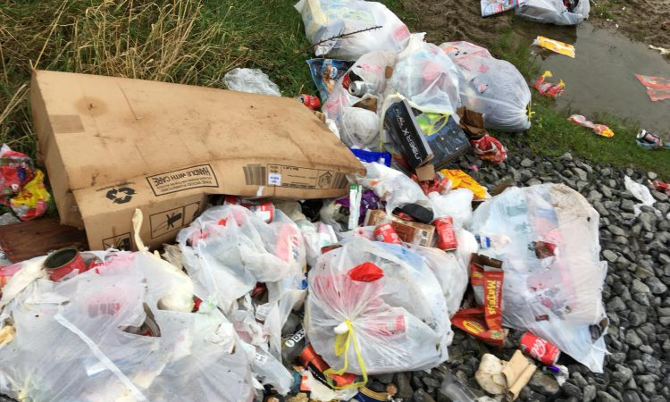Waterford farm hit by post-festive dumping
