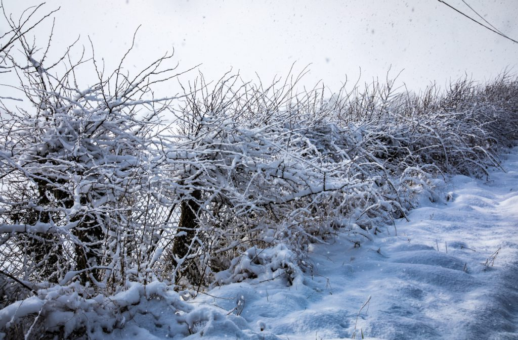 Snow and ice prompt travel warnings as temperatures plunge to -7
