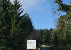 INHFA to hold Leitrim meeting on forestry and environment